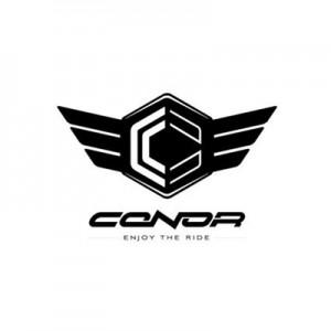 logo_CONOR